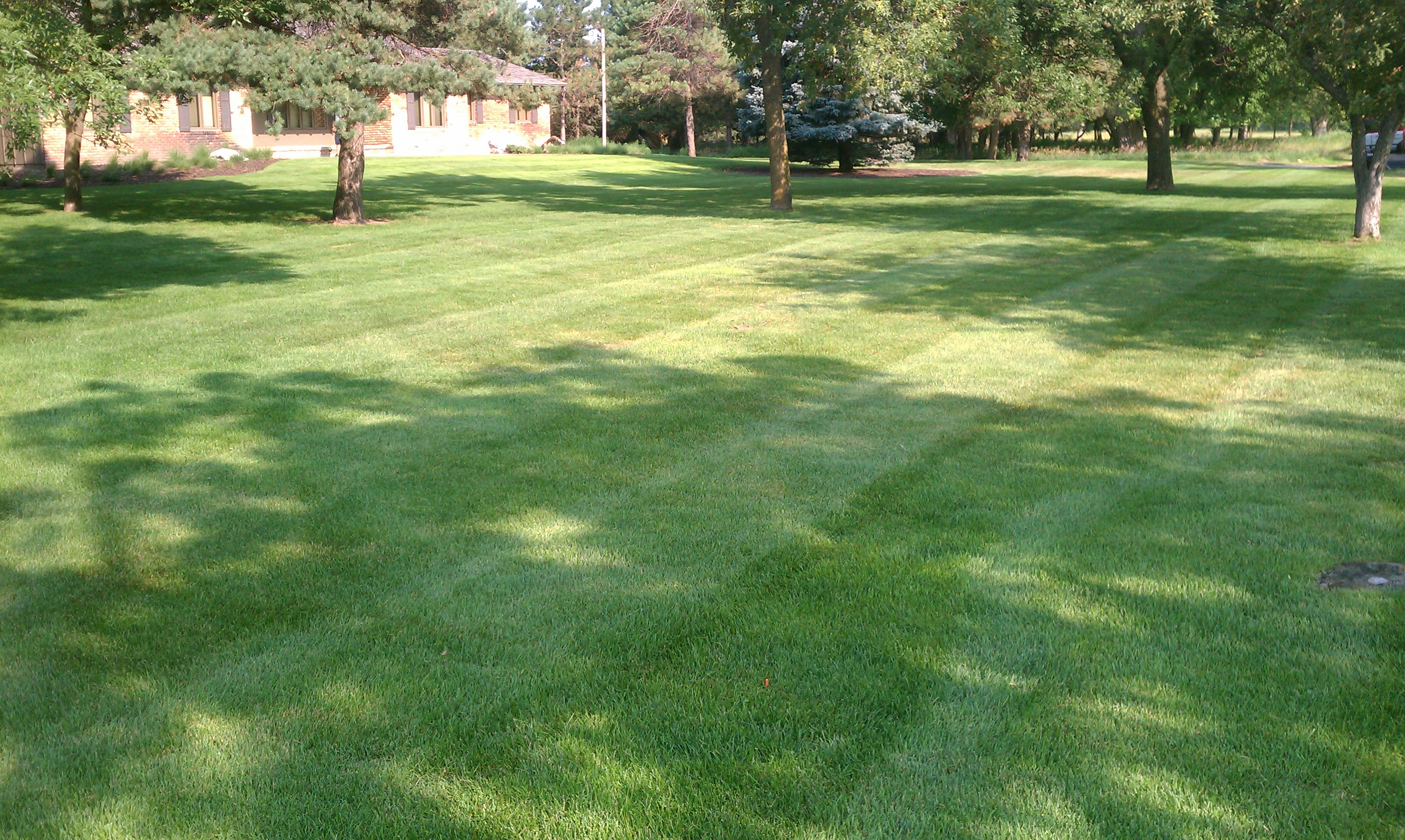 PRO Lawn Care | Pro Grass Lawn and Landscaping